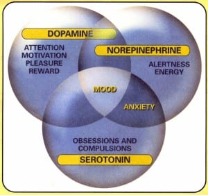 Neurotransmitters Modulate Mood