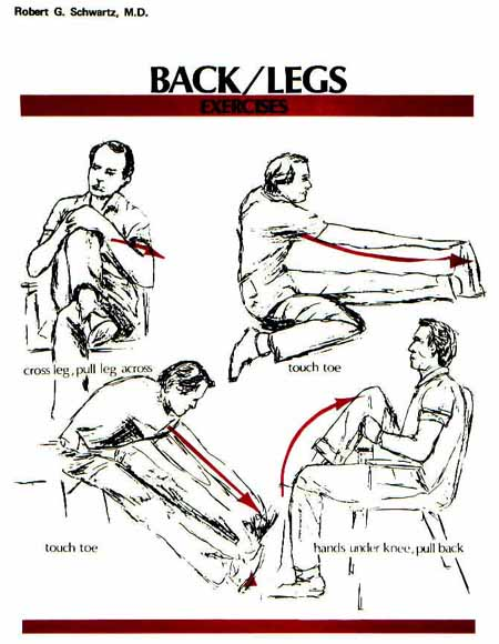 Back and Legs Exercises