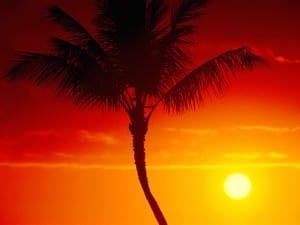 Warmth of Summer, Maui, Hawaii