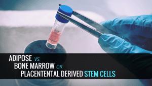 laboratory cells