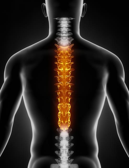 Thoracic Mid Back Pain Piedmont Physical Medicine Rehabilitation